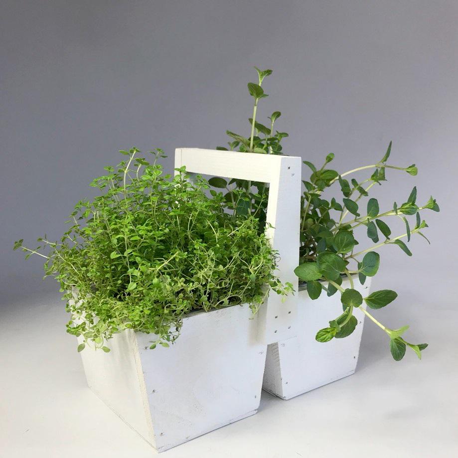 Композиция из пряных трав в корзине