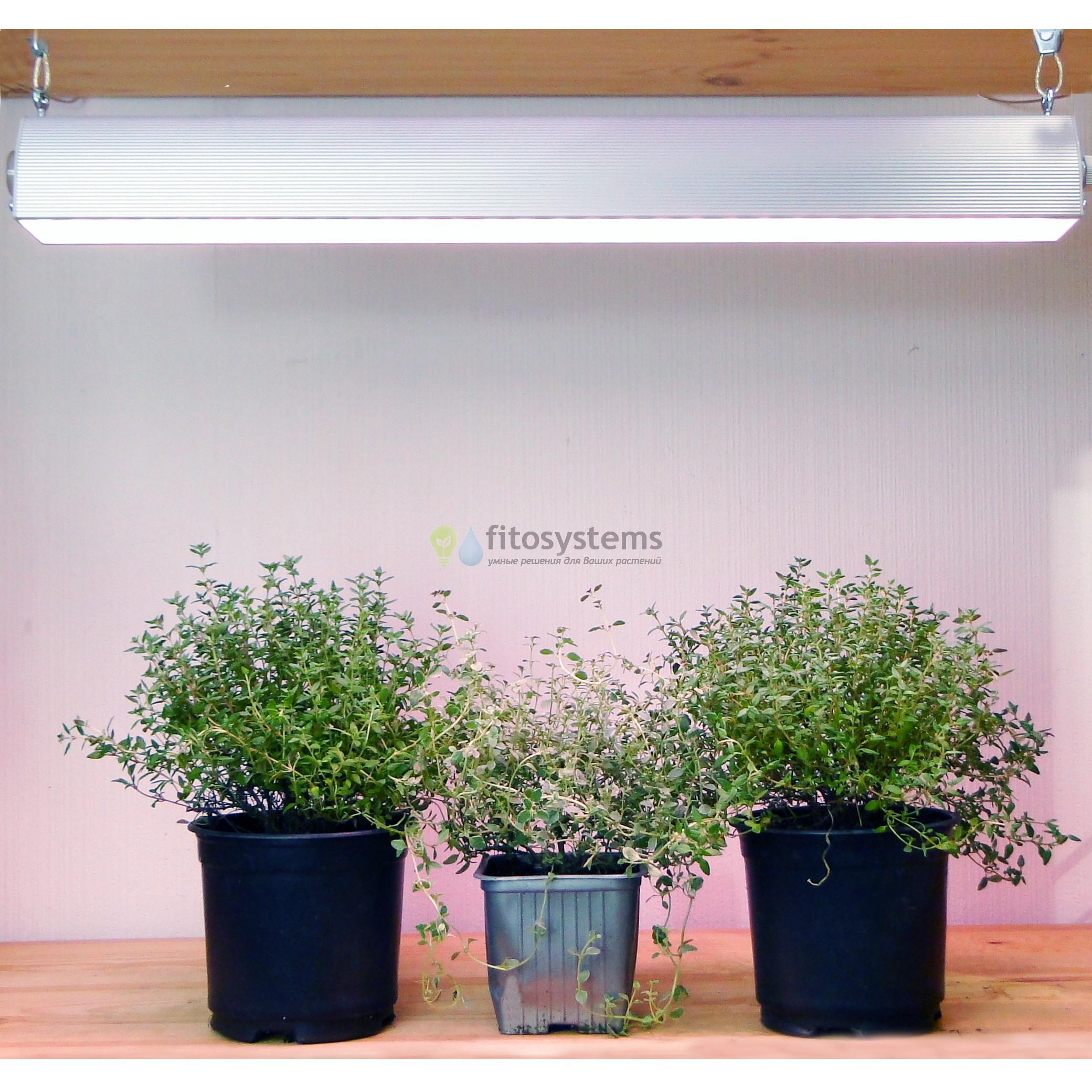 Фитосветильник LED 50 см 35 Вт