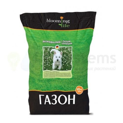 Низкорослый газон с белым клевером (10 кг)